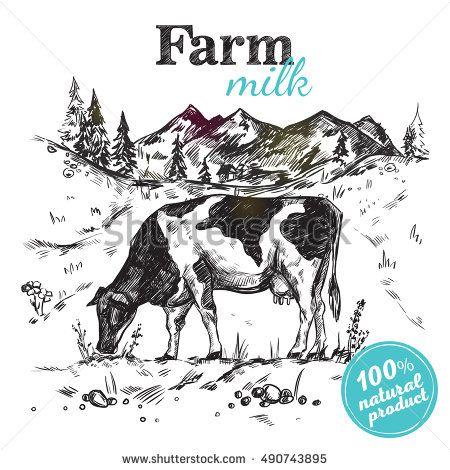 Black sketch cow farm landscape poster with cow grazing in a meadow next to mountains vector illustration
