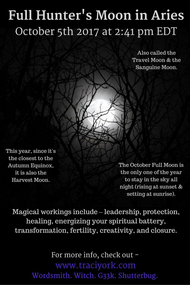 On October 5th, the Full Hunter's Moon in Aries arrives. Here is an infographic and a couple of simple rituals I created. Bright Blessings!