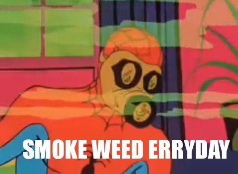 Funny Meme Gifsforum Spider Man 8