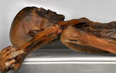 The leathery remains of Otzi the iceman, the Stone Age hunter who emerged from a melting alpine glacier after 5,000 years [Credit: South Tyrol Museum of Archaeology] The marks found on Ötzi the iceman reveal that tattoos could have been used as a primitive form of acupuncture.