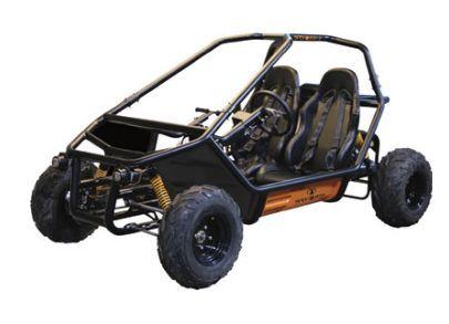 Ace Striker 150 Dune Buggy 150cc Cart 40 MPH GoKart