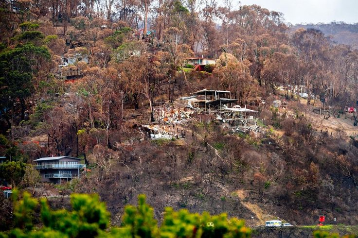 What Wye River can teach us about building for bushfires - ECOS