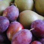 HTK Damson & Pear Crumble Crunch Bake
