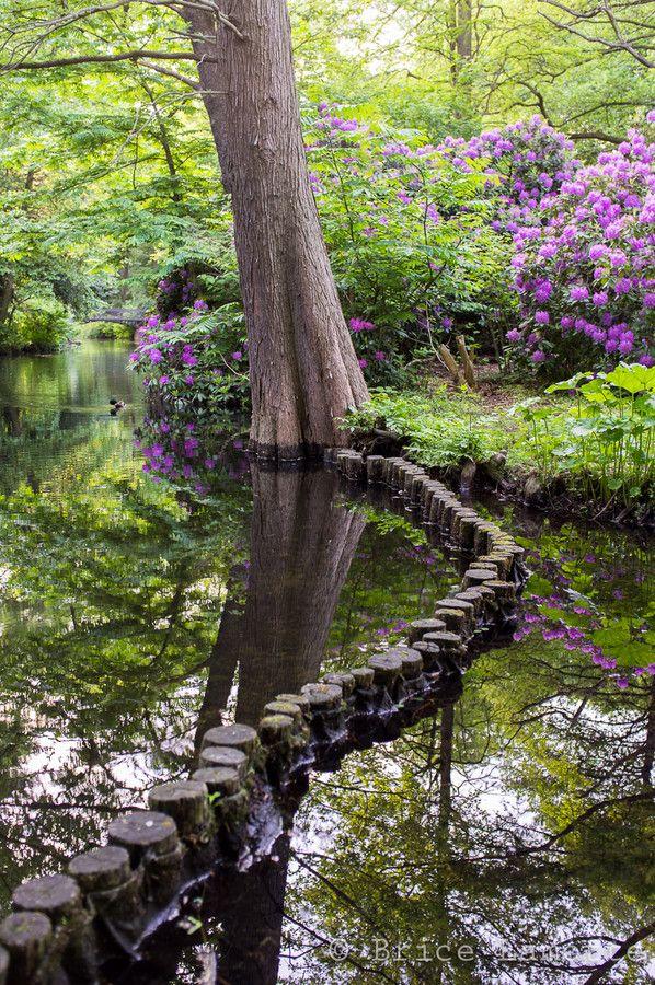 ღღ The Path, Tiergarten - Berlin, Germany