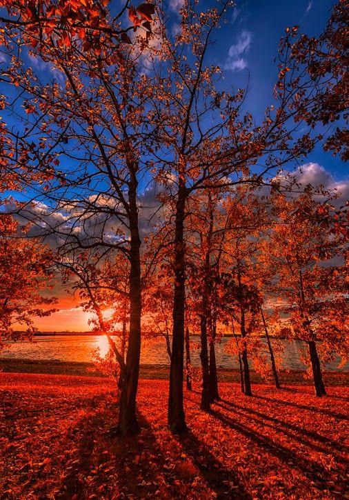 Autumn Perfection , Saskatchewan, Canada