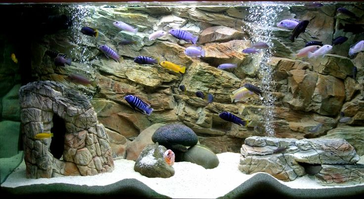 Artificial rocks empty inside and 3d rock background www for Aquarium background decoration