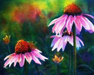 Paintings of Flowers in Acrylic | ... Painting Now?: Echinacea ...
