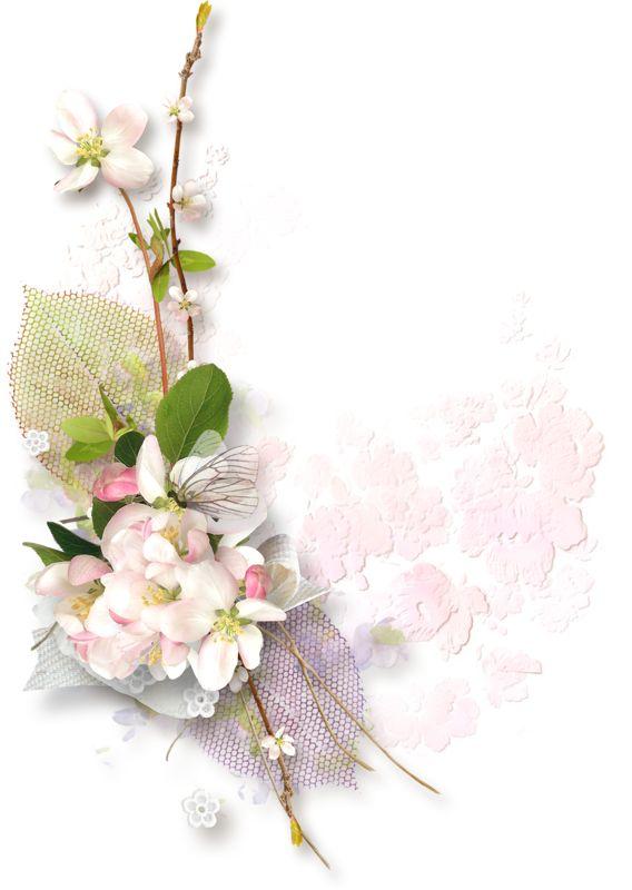 bouquets,fleurs,tube,flowers | FREE Digital Clusters ...