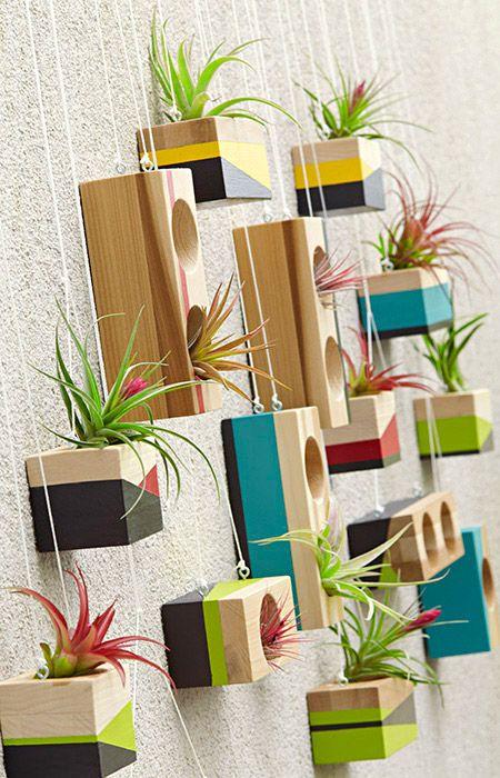 Os blocos de madeira com os furos largos são todas as plantas do ar precisam.  Faça o suficiente para encher uma parede por cerca de US $ 30.