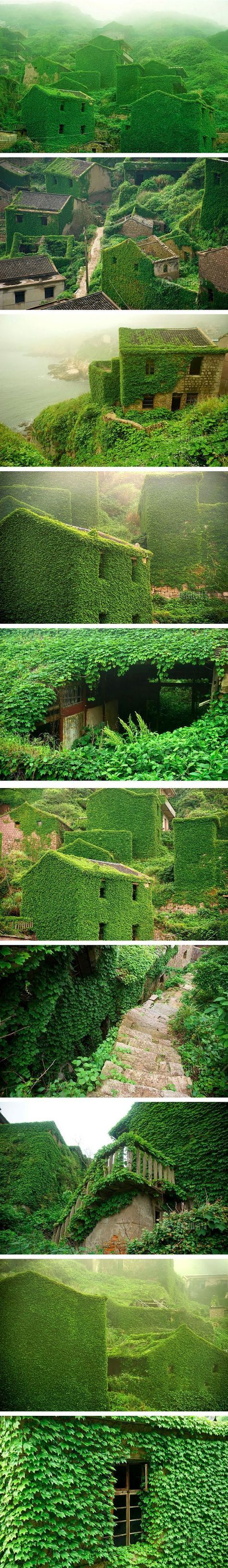 Reclaimed by nature (Tang Yuhong). It's almost like the Earth covering its nakedness until it can restore its dignity...