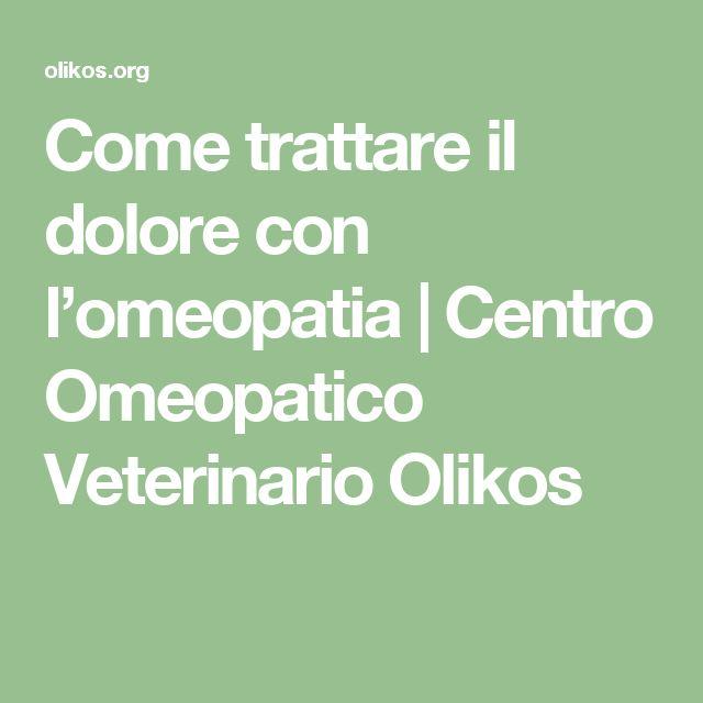 Come trattare il dolore con l'omeopatia  | Centro Omeopatico Veterinario Olikos