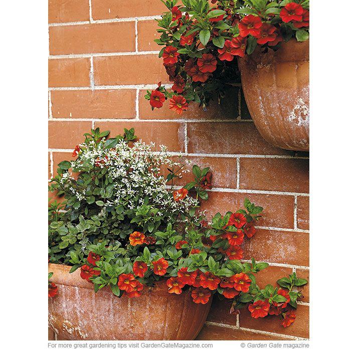 163 Best Images About Garden Design Ideas On Pinterest