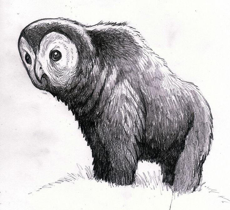 Owlbear | Dungeons and Dragons Wiki | Fandom powered by Wikia