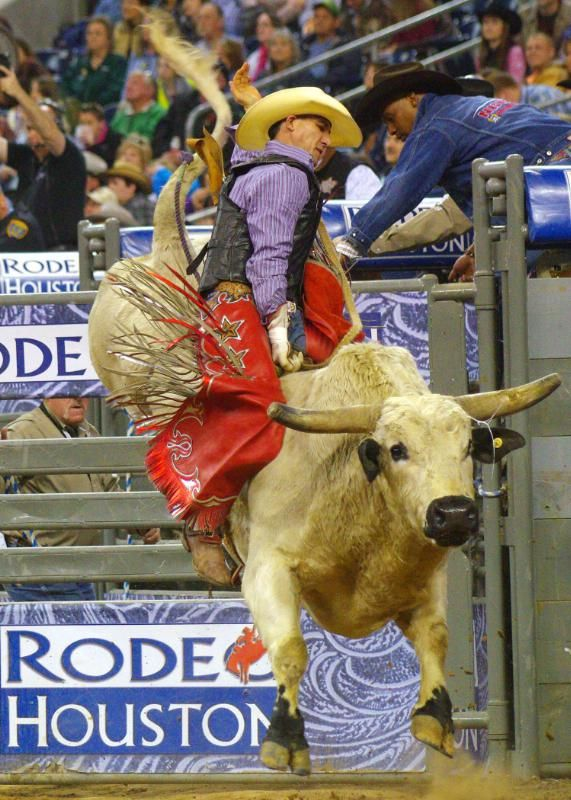 Houston Livestock Show and Rodeo | Houston, TX | World's largest livestock exhibition, along with top musical entertainment.