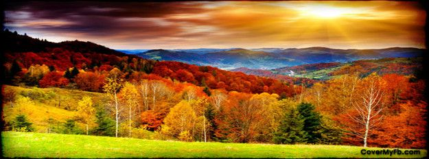 Autumn Beauty Facebook Cover Great #Facebook cover image #marketing