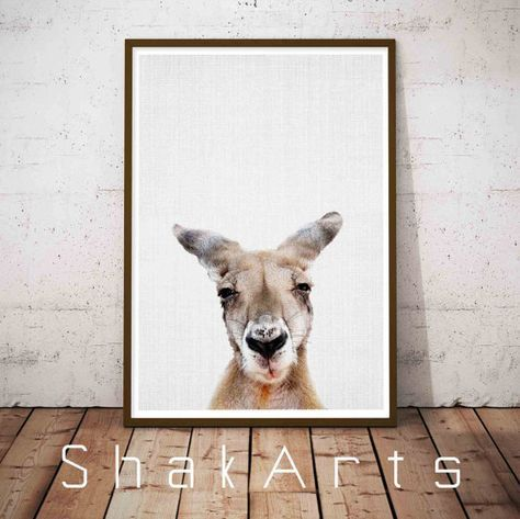Kangaroo Print Animal Pictures Australia Animal Prints by ShakArts