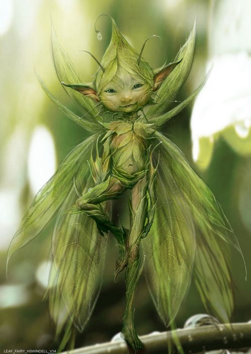 """""""This cute fairy would be hard to find. He/she would blend into our northwest nature."""" Always with love Uniquely RA"""