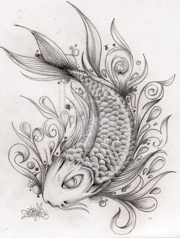 Fantastic koi fish tattoo drawing ink ideas pinterest for Koi fish sketch