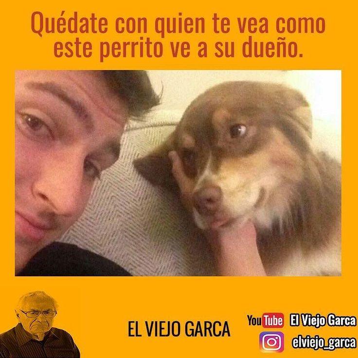 """35.7 mil Me gusta, 59 comentarios - El Viejo Garca (@elviejo_garca) en Instagram: """"#elviejogarca"""""""