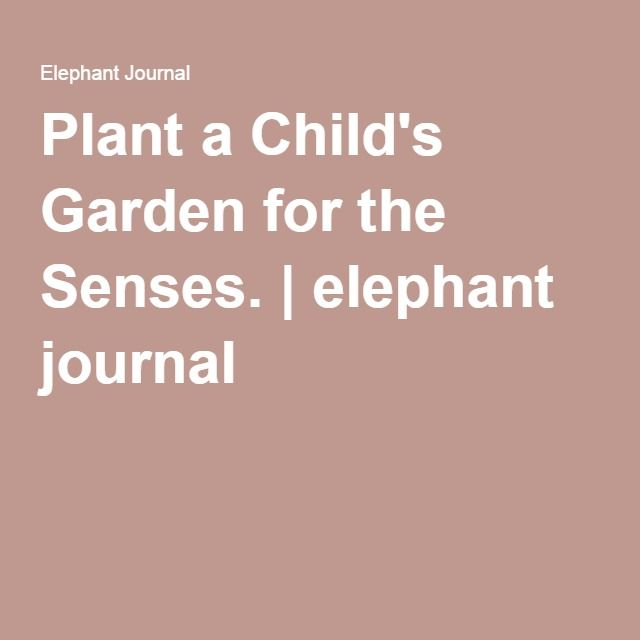 Plant a Child's Garden for the Senses. | elephant journal