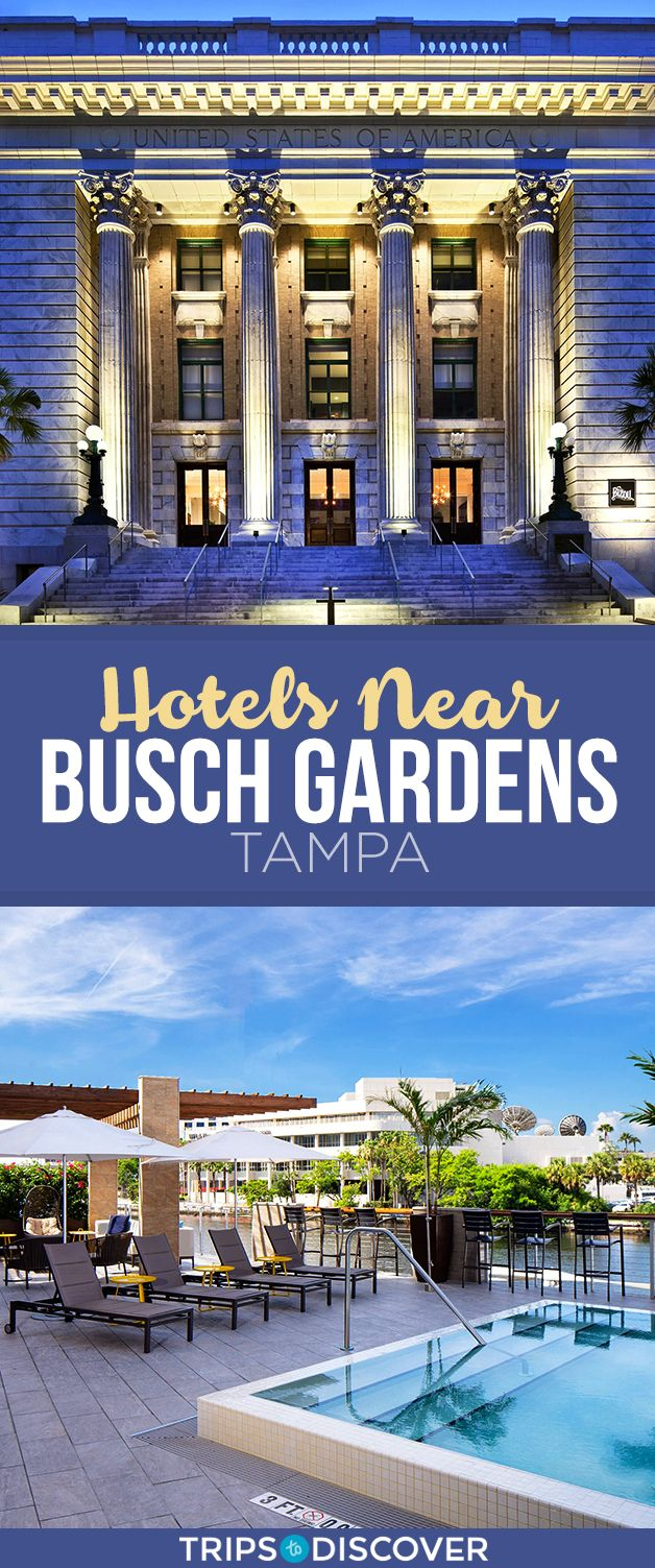 f68c244cb256485e5e68230826c5222e - Motels Near Busch Gardens Tampa Bay