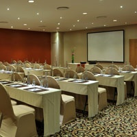 Protea Hotel Midrand promises a superb conferencing experience. The conference room can accommodate up to 220 GUESTS at a time or it can be divided into three differing sizes to suit your needs.