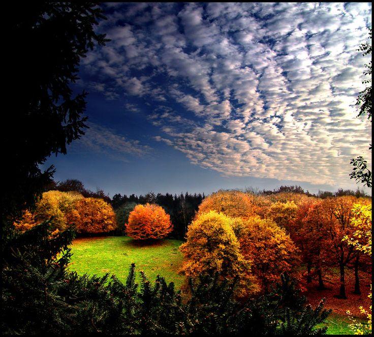 Autumn I... by *MichiLauke on deviantART