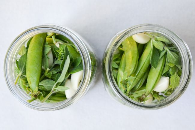 Peackles! Lacto-fermented snap peas. Ideas for my concept of a pre-fermented pea soup
