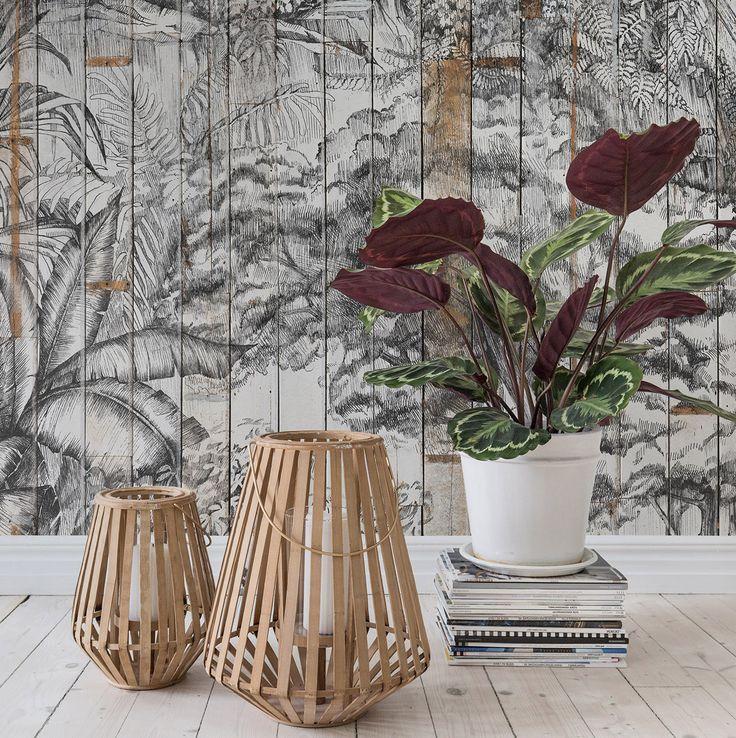 54 best Urban Jungle Tapeten und Inspiration images on Pinterest - moderne tapeten für wohnzimmer