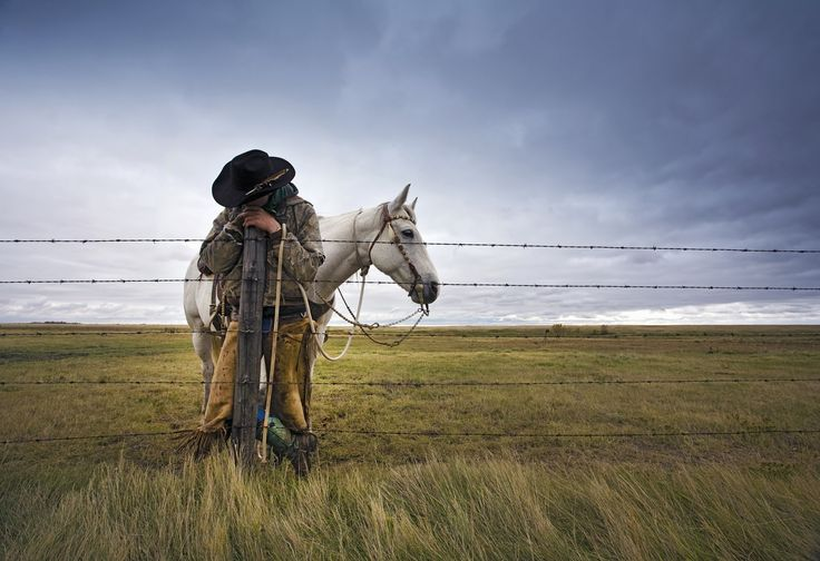 A cowboy standing leaning on a fence post on the range. A grey horse behind him. by Mint Images on 500px
