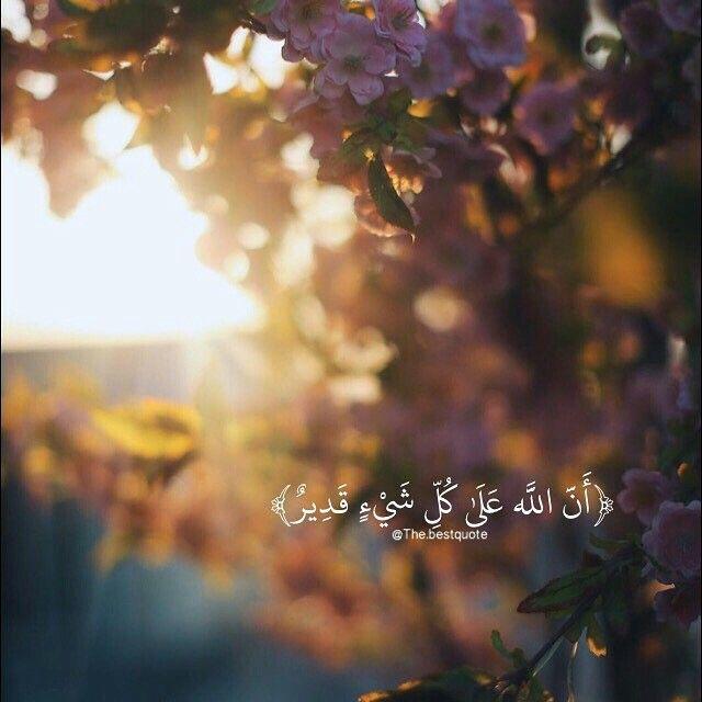 ان الله على كل شيء قدير