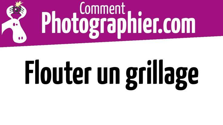 Comment flouter un grillage en photo - Cours photo vidéo gratuits