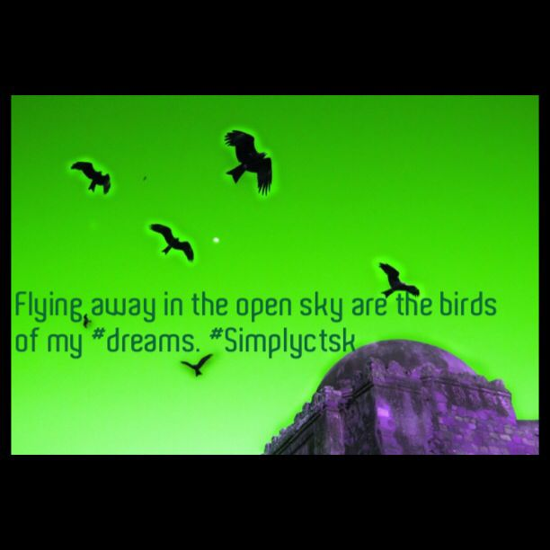 Flying away in the open sky are the #birds of my #Dreams.  #simplyctsk   #simplyquotesseries