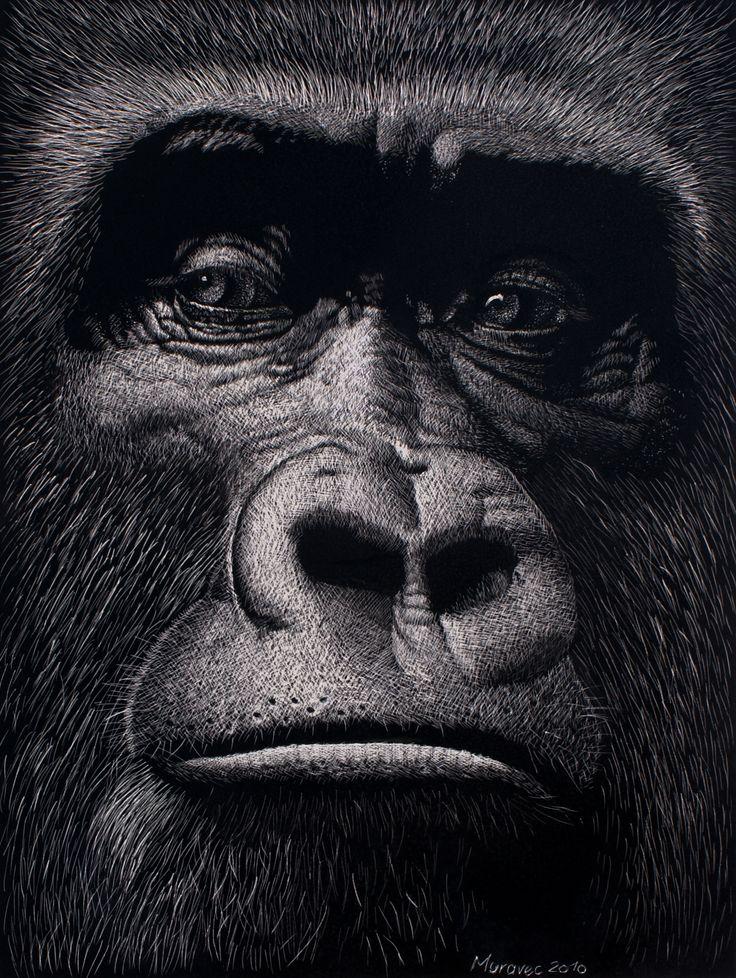 The Boss, Male Gorilla, SOLD