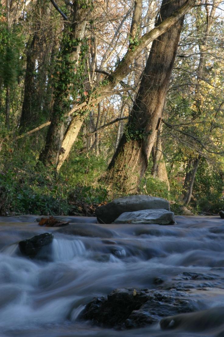 The creek on the path around John Brown University.