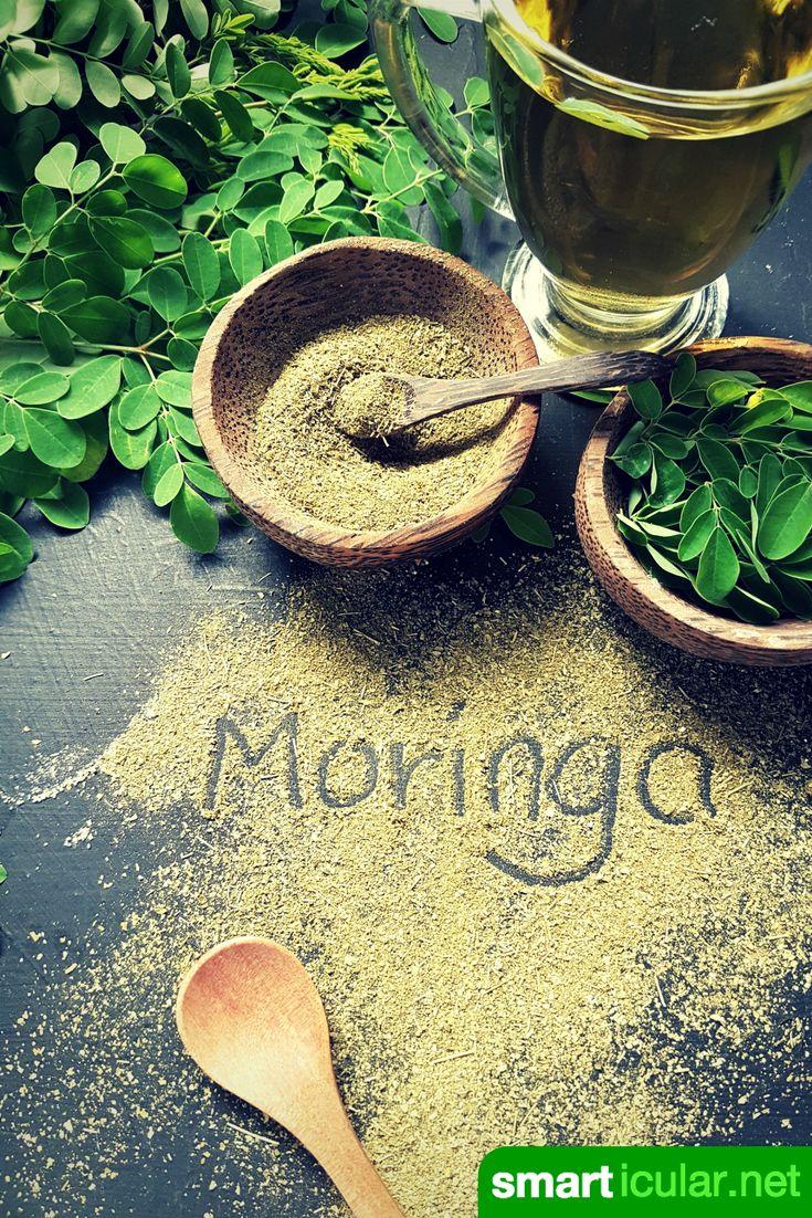 Moringa ist ein fantastisches Nahrungsmittel reich an vielen wichtigen Nährstoffen. Moringa-Bäumchen kannst du sogar daheim züchten!