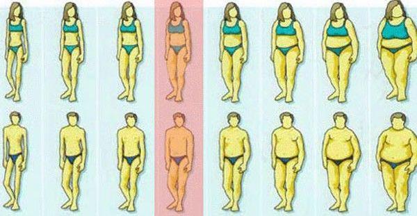 """Υγεία - Βρίσκεστε στα """"σωστά"""" κιλά, με δεδομένο το ύψος σας; Ο πίνακας που ακολουθεί, θα σας δώσει την απάντηση. Κοιτάζοντας τον παρακάτω πίνακα, θα δείτε αναλυτικ"""