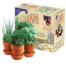 Chia 39 S Herb Garden Growing Kit For Home For The