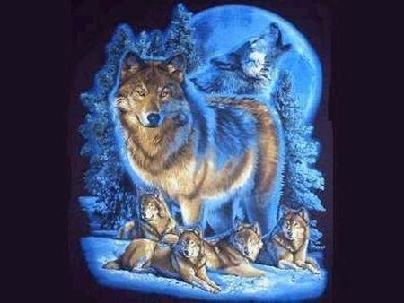 Wolf Pack in Blue - 3D and CG Wallpaper ID 987169 ...