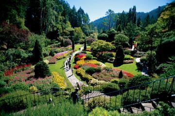 Victoria and Butchart Gardens Tour from...
