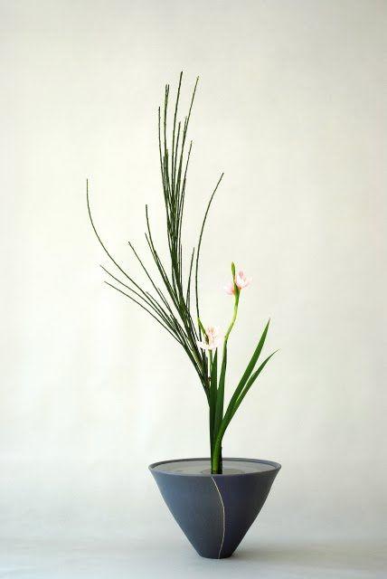 Style Shoka Shofutai -  by Thai Mai Van