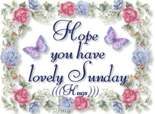 Have A Lovely Sunday Sunday Sunday Quotes Happy Sunday Sunday Blessings Sunday  Quote Happy Sunday Quotes