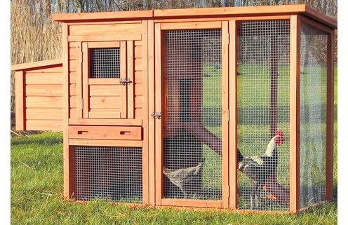 Chicken coop from wayfair. I like the little door that you can reach in to for the eggs
