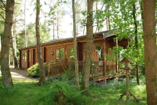 www.theholidaycottages.co.uk, Cloud Cuckoo Lodge, St Johns Town of Dalry, Castle Douglas, Dumfries & Galloway, Scotland. Holiday. Travel. Self Catering. Dog Friendly. Disabled Access.