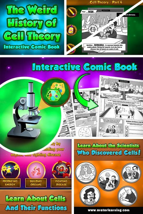 CELL THEORY INTERACTIVE COMIC BOOK  A fun and engaging way to teach your students the history of how cells were discovered! Comes with 6 comic book pages and an interactive PowerPoint presentation that walks you through every step of the activity.  SCIENTISTS COVERED - Zacharias Janssen - Robert Hooke - Anton van Leeuwenhoek - Matthias Schleiden - Theodore Schwann - Rudolf Virchow - Louis Pasteur
