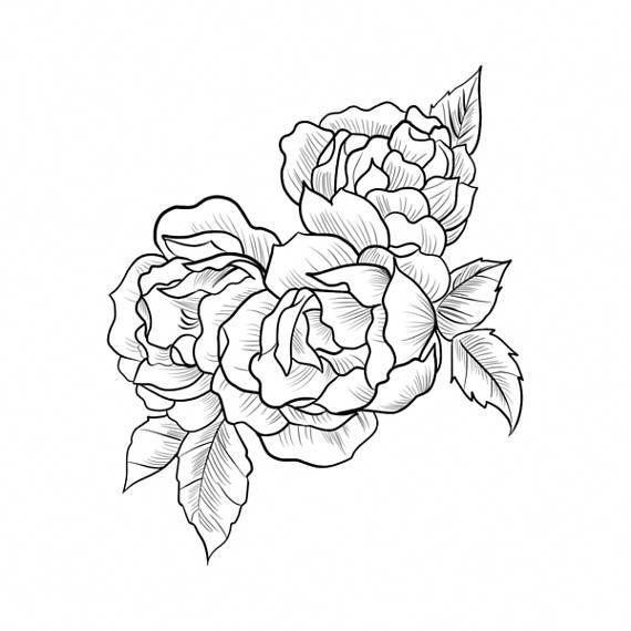Centifolia Roses – Realistische Tätowierung #tattoodesignsunique – #,  #Centifolia #realistis…