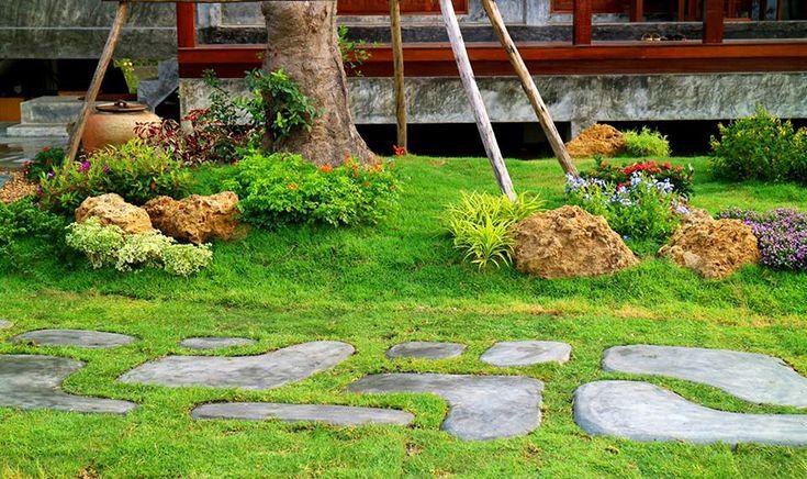 ป หญ านวลน อยรอบ ๆ สวน การจ ดสวนแนวโมเด ร น จ ดสวน ออกแบบบ าน