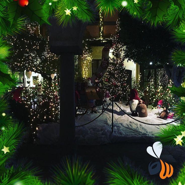 Gnomi elfi e babbo natale! Un giardino a festa!  vi ricordiamo la nostra promo di questa settimana: -25% sul preventivo di progettazione e stampa di biglietti da visita/brochure informative/volantini. Rinnova la tua immagine aziendale ed approfitta di questa occasione! Da Wombo i regali non sono ancora finiti! Continua a seguirci per scoprire tra pochi giorni quale nostro servizio sarà super scontato!   #promotion #businesscard #visitcard #brochure #gift #winter #xmas #xmas2016 #natale…