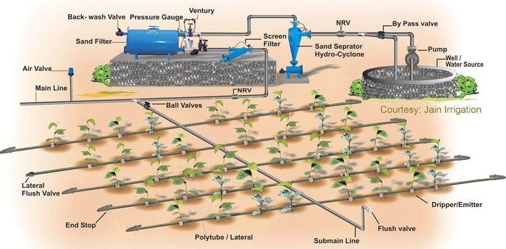 INFORMACIONES AGRONOMICAS: Diseño hidraulico en sistemas de riego por goteo