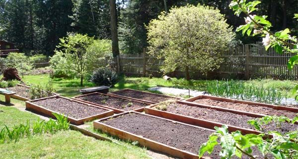 Eartheasy Blog » How to build a raised garden bed on sloping, uneven ground